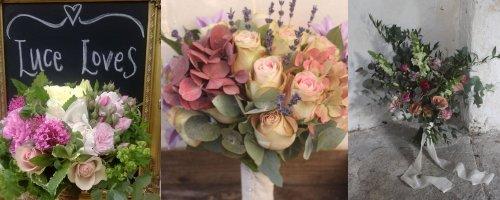 Luce Loves Flowers