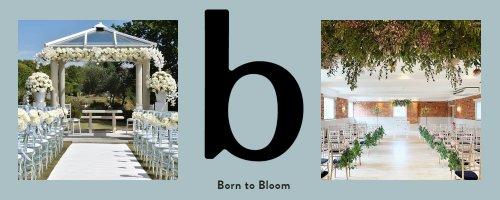 Born To Bloom Dorset